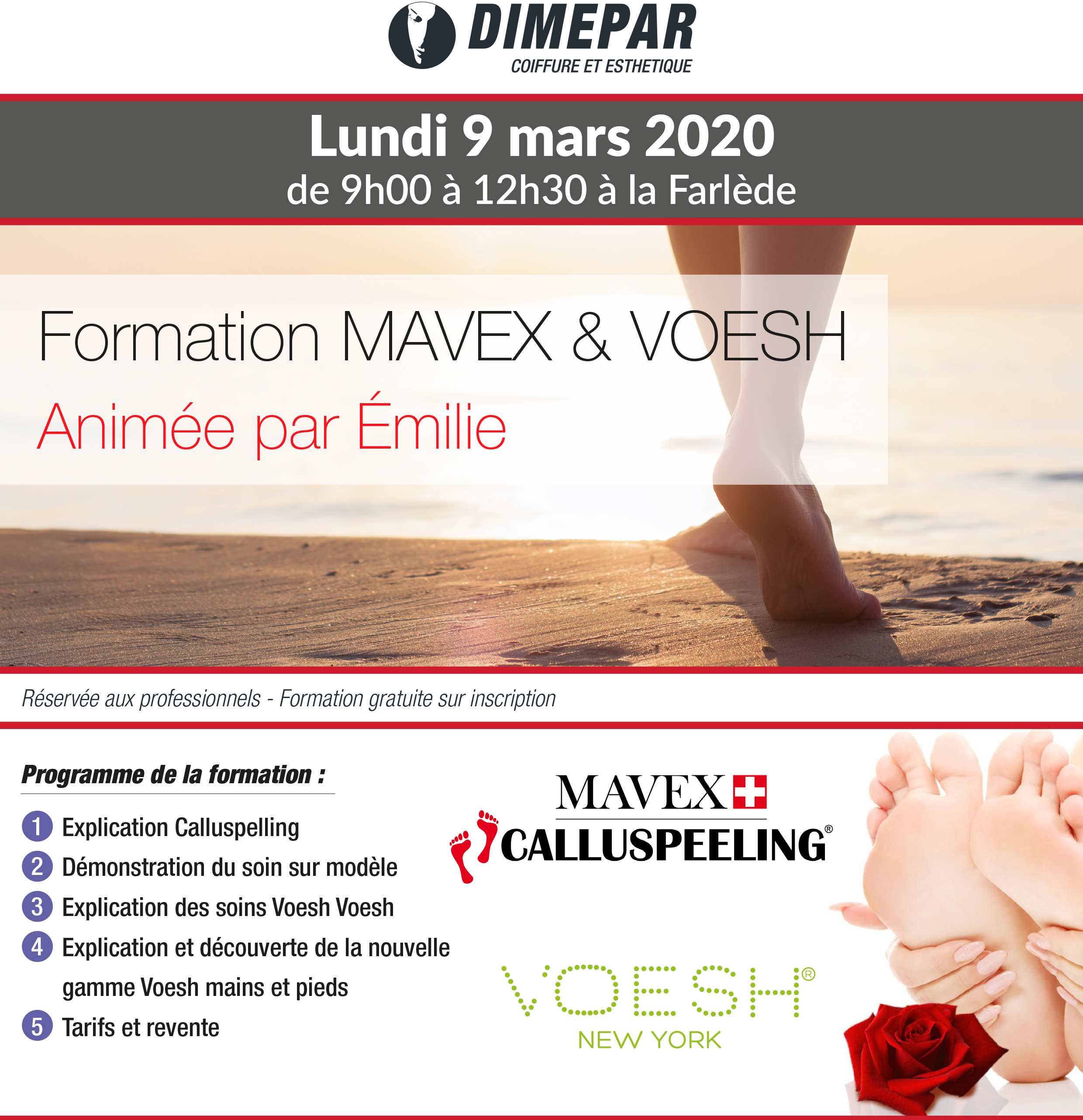 Formation MAVEX & VOESH